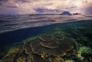 Bunaken, underwater, diving, snorkeling, reef, over under, split view, sunset, underwater photography, boat, island, Man