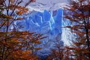 perito moreno,glacier,autumn,fall,otono,patagonia,los glaciares,el calafate