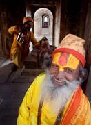 pashuputinath,sadhus,portrait,hall of mirrors,nepal, kathmandu,tea,culture,hindu,himalaya