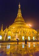 shwedagon paya, shwedagon pagoda, reflection, rain, umbrellas, monks, night, buddhism, burma, myanmar