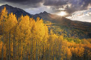 Colorado, Fall, aspens, Telluride, Ouray, Wilson, sunset, glow, sun star, autumn, rocky mountains
