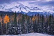 Telluride, Aspen, Fall, Wilson peak, snow, mountains