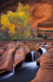 coyote gulch,coyote gulch waterfall,escalante photos, slot canyons,escalante cottonwoods,fall, autum