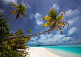 one foot island, aitutaki, cook islands, beach, white sand, palms, turquise, blue lagoon