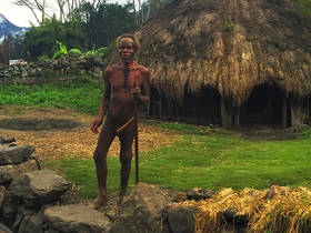 Dani, Wamena, Koteca, Tribe, elder, traditional, culture, trek, New Guinea