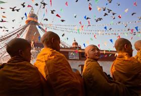 bodhnath stupa,kathmandu culture,pidgeons,monks,bodhnath ceremony,nepal
