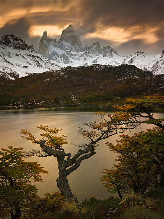 fitzroy picture,fitzroy photo,patagonia fall,lenga tree,patagonia picture,patagonia photo,trek,capri, photo