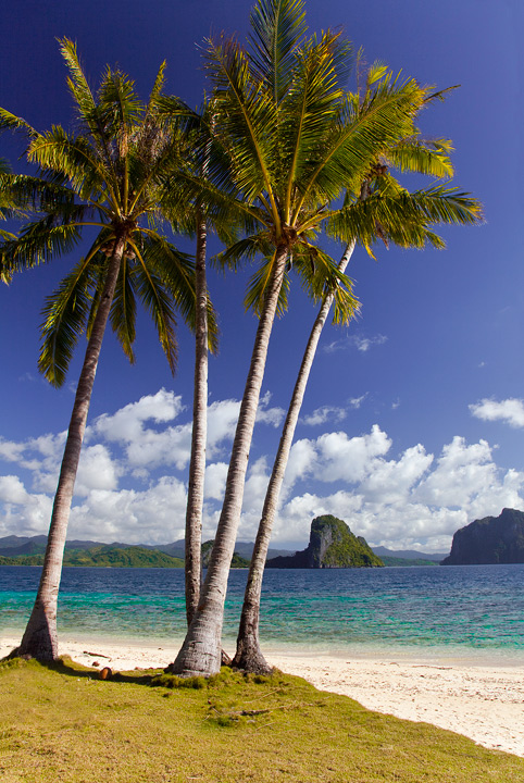 el nido, pinagbuyutan, island, paradise, tour b, beach, palm, palawan, tropical, photo
