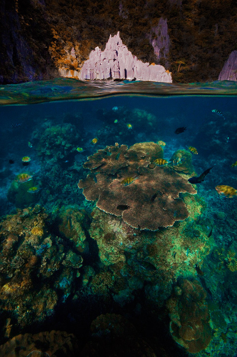 el nido, palawan, philippines, over under, split level, underwater, beach, cadlao, tropical, coral, island, photo