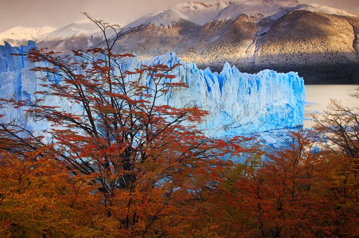 perito moreno,autumn,otono,fall,ice,lenga,lire,sunrise,glacier,patagonia,el calafate, photo