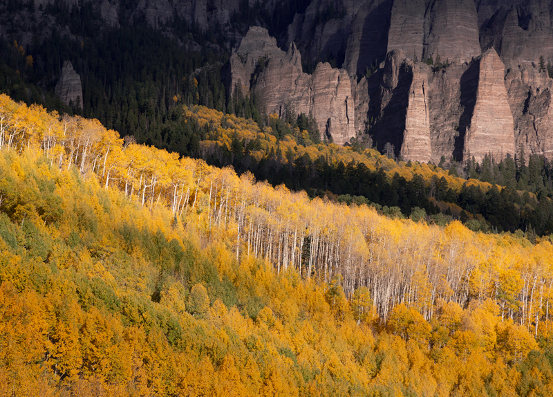 Ridgway, Aspens, Cimarron, Fall, Uncompaghre, Forest, Colorado, cliff, photo