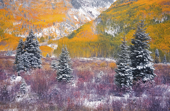 A delicate early snow fall accents the pastel colors of autumn.