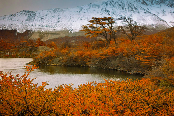 The spectacular fall colors of Patagonia. The change of season brings cooler drier air, the winds die down and fresh snow begins...