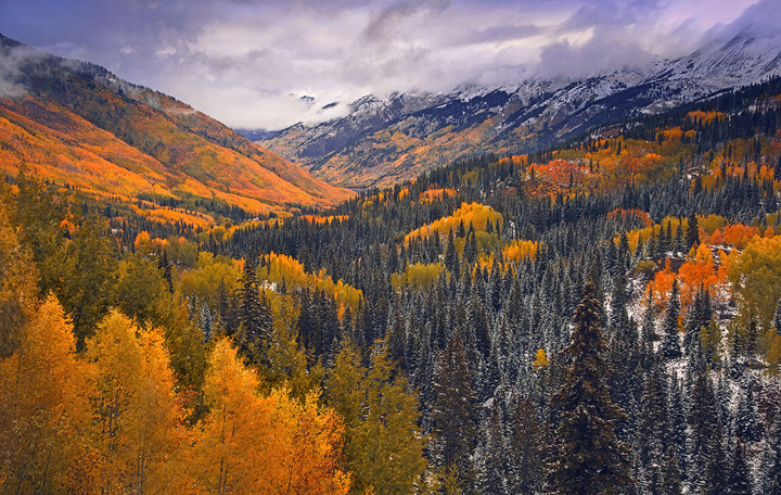 fall, aspens, Colorado, snow, San Juan, mountains, fall, Ouray, Telluride, Durango, photo