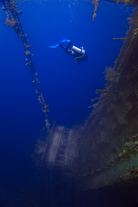 taiyo wreck,marovo,diving,snorkeling, underwater photography,shipwreck,solomon, photo