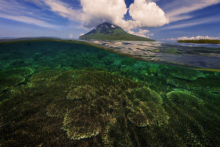 bunaken, sulawesi, underwater, over under, split view, manado, indonesia, volcano, adventure travel, diving, photo